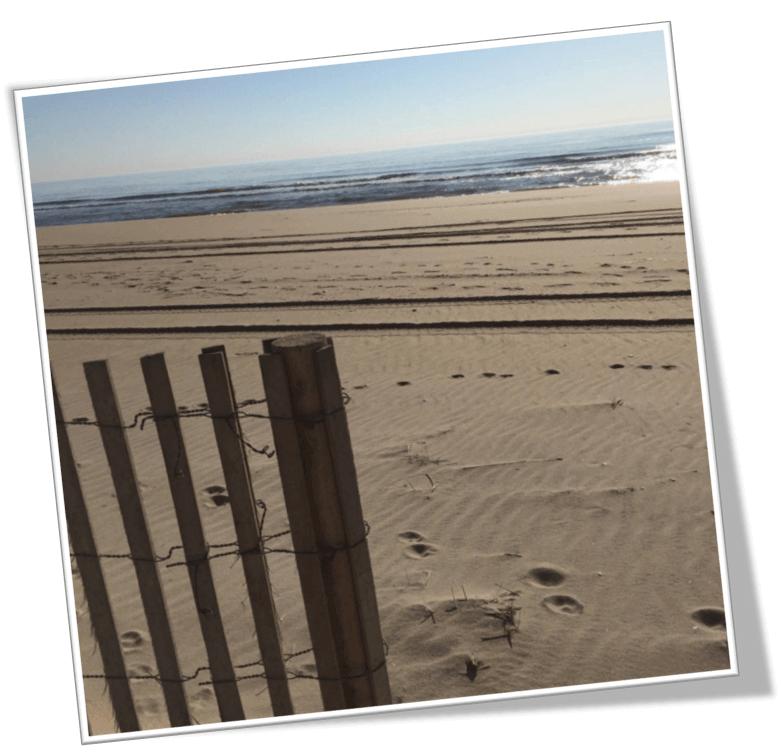 Foreclosure In Long Beach Island Nj