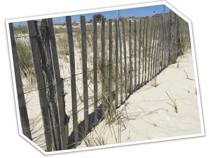 Holgate NJ | Long Beach Island | LBI NJ Real Estate