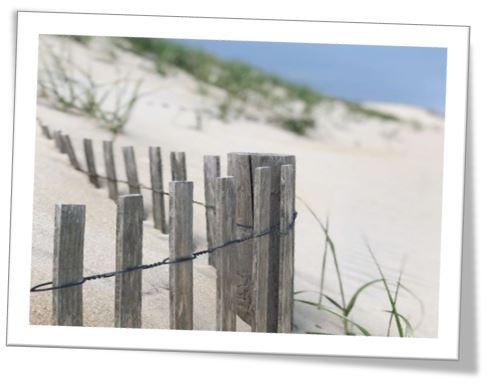 LBI Real Estate and Coronavirus
